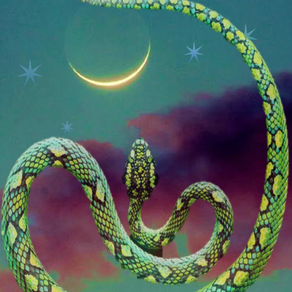 Scorpio New Moon: The Poison is The Cure