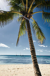 travel-adventure-palms-white-sand-beach-
