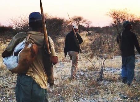 A meeting of minds in the Kalahari