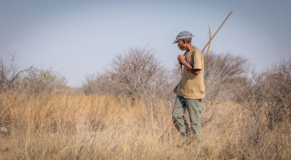 Ju/Hoansi tracker on the trail of a wildebeest