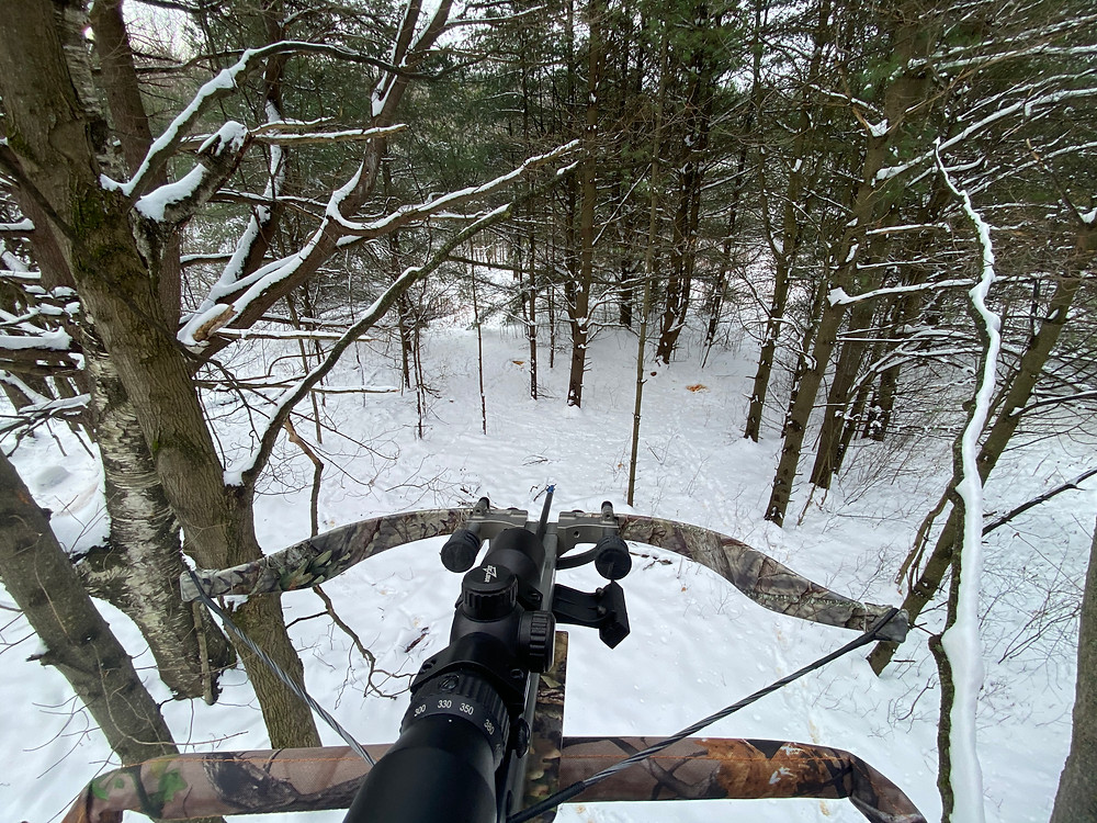 View from tree stand with snow covering the ground.