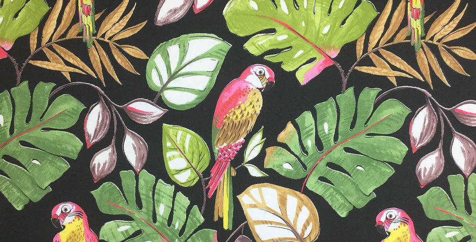 Tropical Pink Parrot