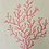 Thumbnail: Embroidered Coral - Regal