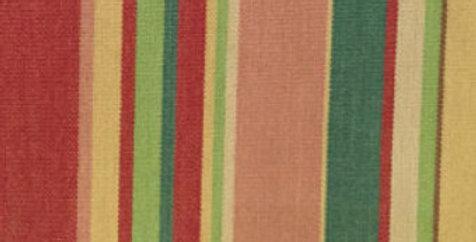 Multicolored Stripe