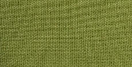 Spectrum Kiwi - Solid Green