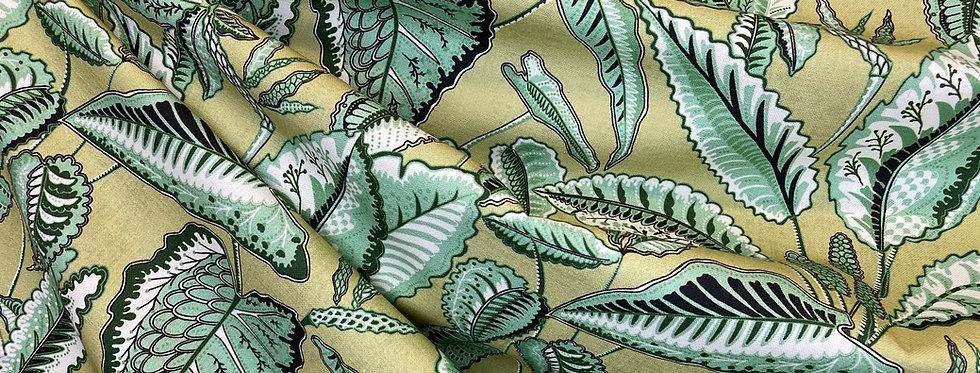 Cypress Kiwi Foliage