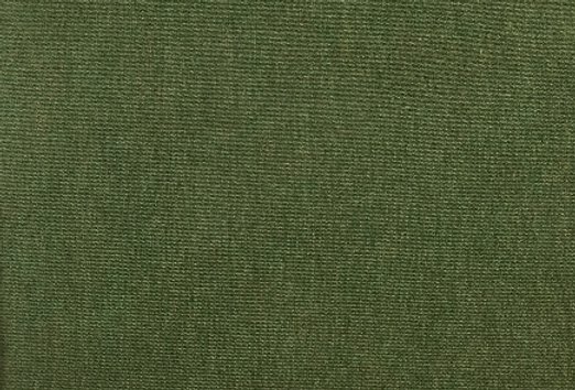 Sunbrella - Canvas Fern