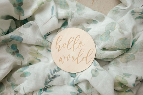 Hello World Eucalyptus Newborn Gift Set