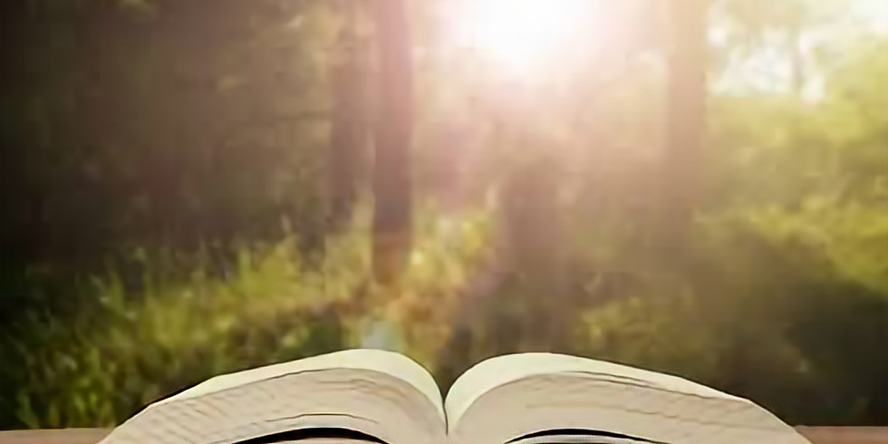 Weekly Beginner/Refresher Bible Studies