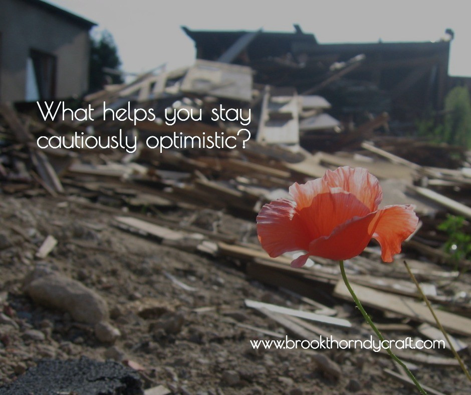 Red poppies growing in front of demolished houses