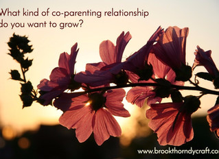 Cultivating a Relationship as Co-parents After Separation*