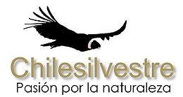 chilesilvestre-logo-1509729987.jpg