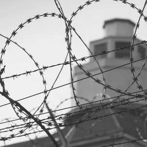 Guest blog: maternal imprisonment polling shows clear support for better services in the community
