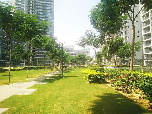 Large Central Green Park