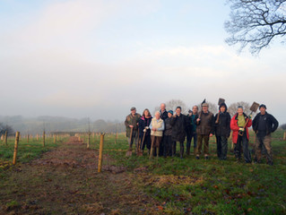PLANTING A NEW ORCHARDS WITH THE VILLAGE