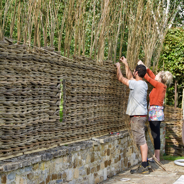 Dry Willow fence, Private Commission, Wiltshire 2017Willow Fencing, Hurdles and Panels. Sustainable, handmade and harvested wicker fencing by Professional Basketmakers Jenny Crisp and Issy Wilkes, Willow with Roots