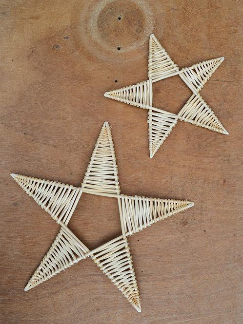 White Willow Star