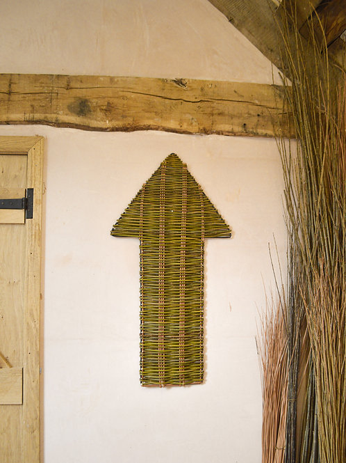 Giant Willow Arrow
