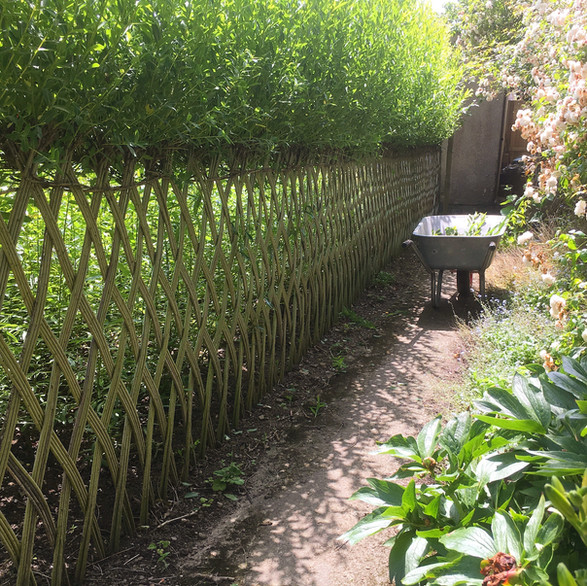 Willow Fencing, Hurdles and Panels. Sustainable, handmade and harvested wicker fencing by Professional Basketmakers Jenny Crisp and Issy Wilkes, Willow with Roots