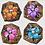 Thumbnail: Purple Flower Shell