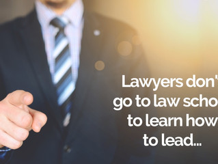 Lawyers don't go to law school to learn how to lead.