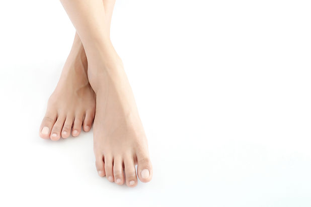 Beautiful female legs and feet on a whit