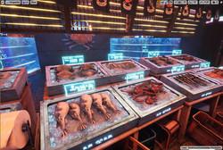 Seafood_02