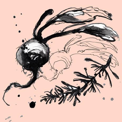 drawings_02.png