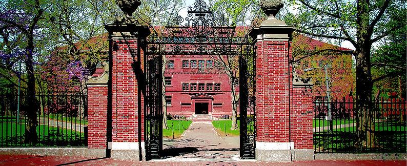 Harvard Yard Preview.jpg