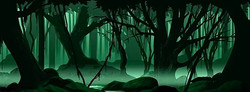 D005 Scary Forest 17'  x 40'