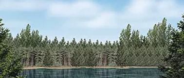 D169 Lake Drop 15' 6_ x 40'.jpg