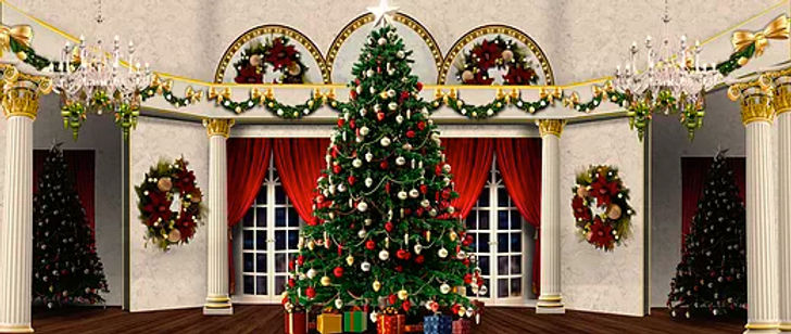 D309 Nutcracker Mansion 17' x 40'.jpg