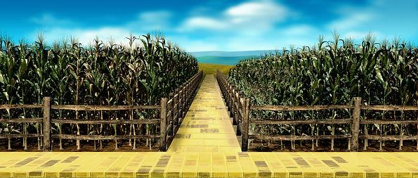 Preview Wizard oif Oz Corn field.jpg