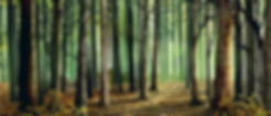 D185 Woods.jpg