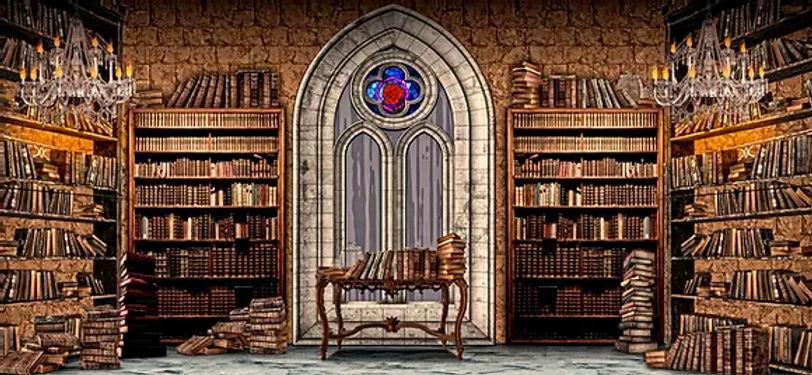 D193 Library 17%22 x 40'.jpg