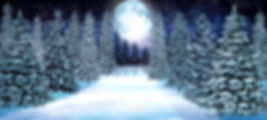 Snowy Forest New preview (1).jpg