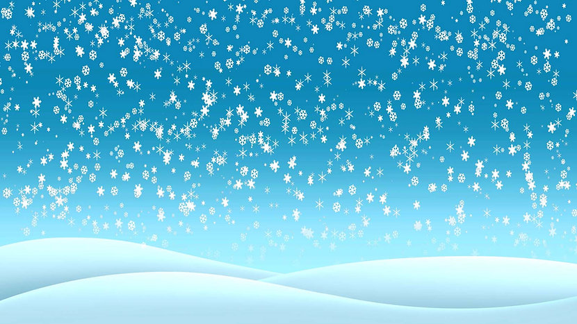 D314 Snowflakes DS.jpg