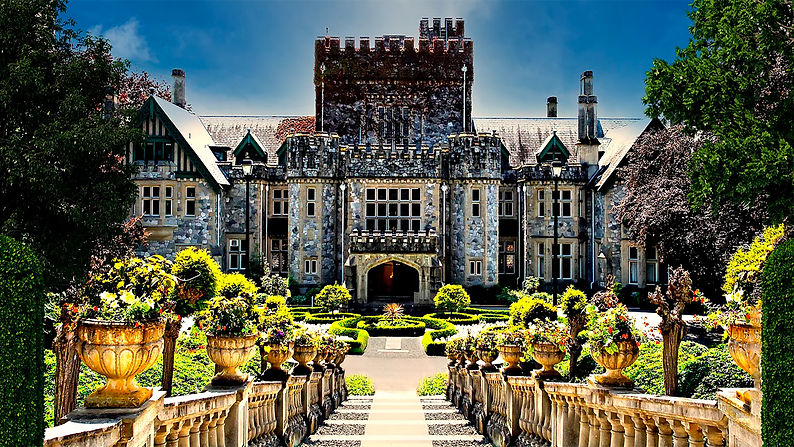 D366 Castle with Courtyard DS.jpg