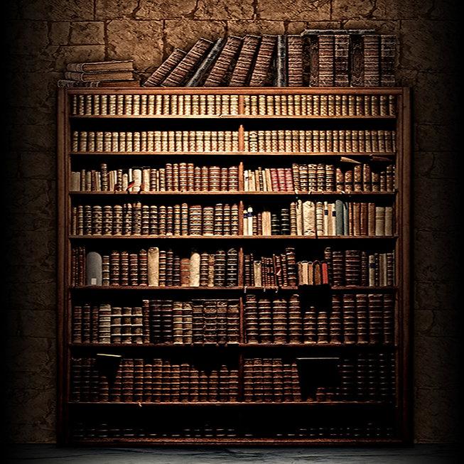 Book Shelf  Dark Edges12 x 17small.jpg