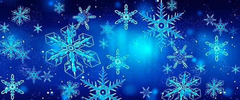 D229 Frozen 17' x 40'.jpg