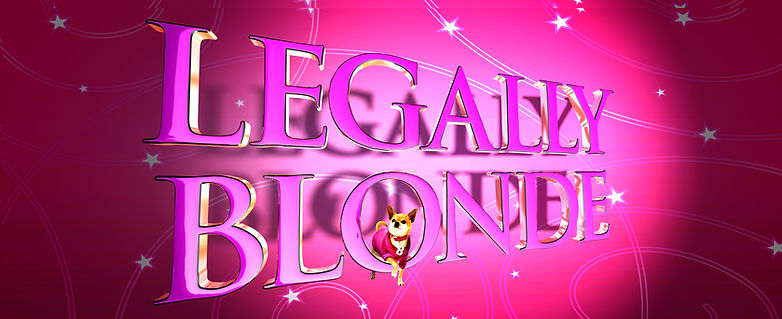 Legally Blonde Backdrop Preview Size.jpg