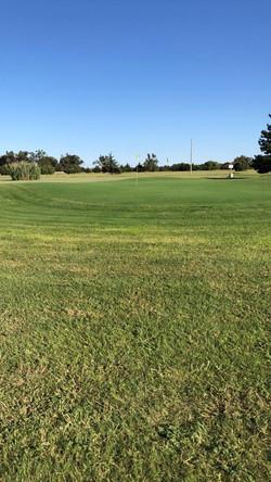 golf course4