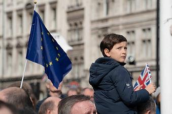 Brexit41small.jpg