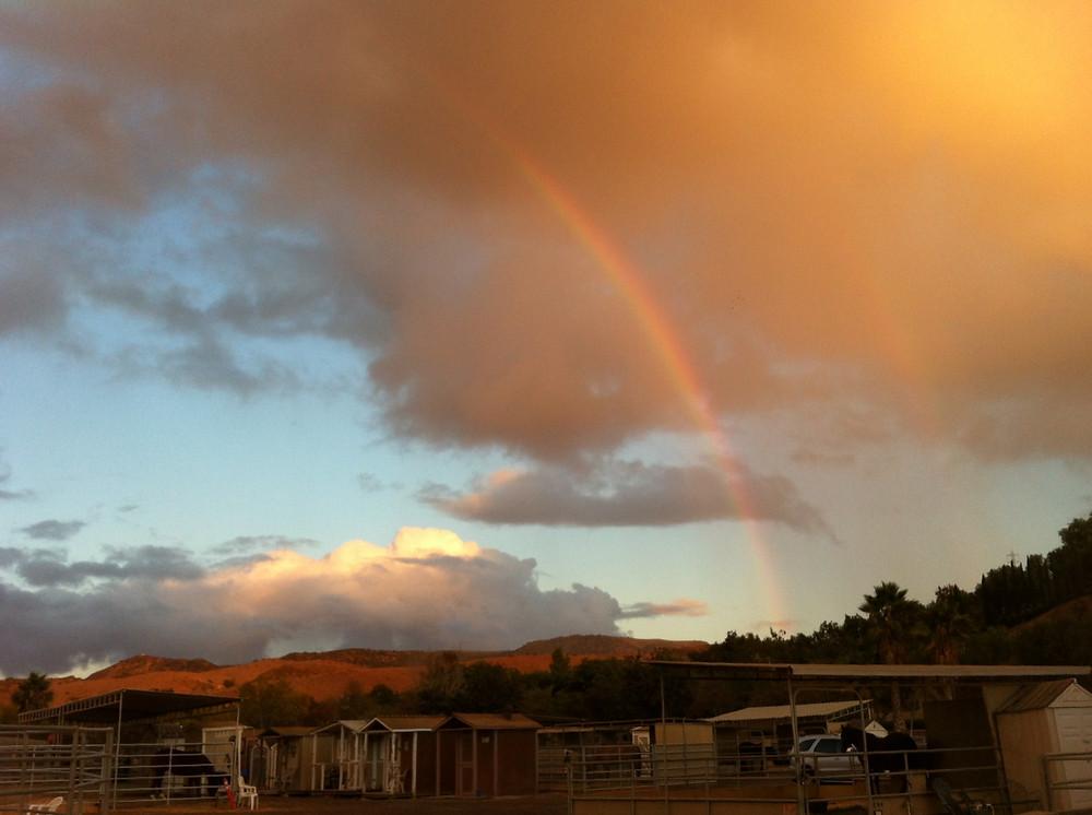 2014-XXX-Double Rainbow- Katie_edited.jpeg