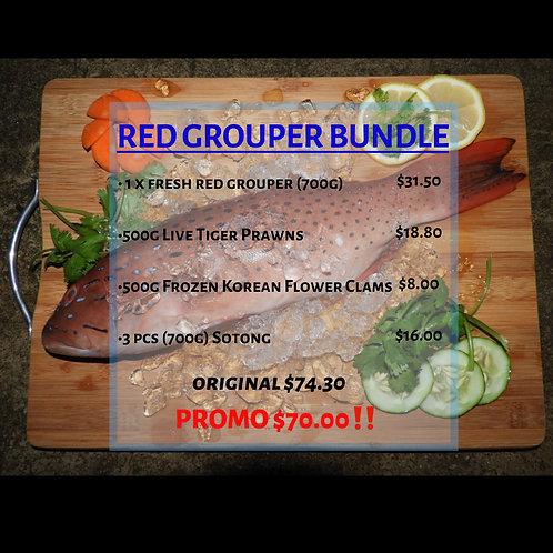 Red Grouper Bundle