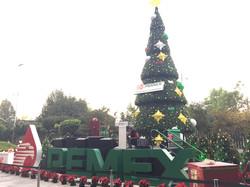 árbol Pemex 15 m