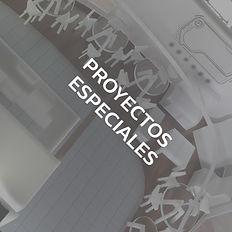 PROYECTOS ESPECIALES.jpg