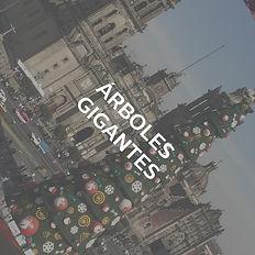 ÁRBOLES_GIGANTES.jpg