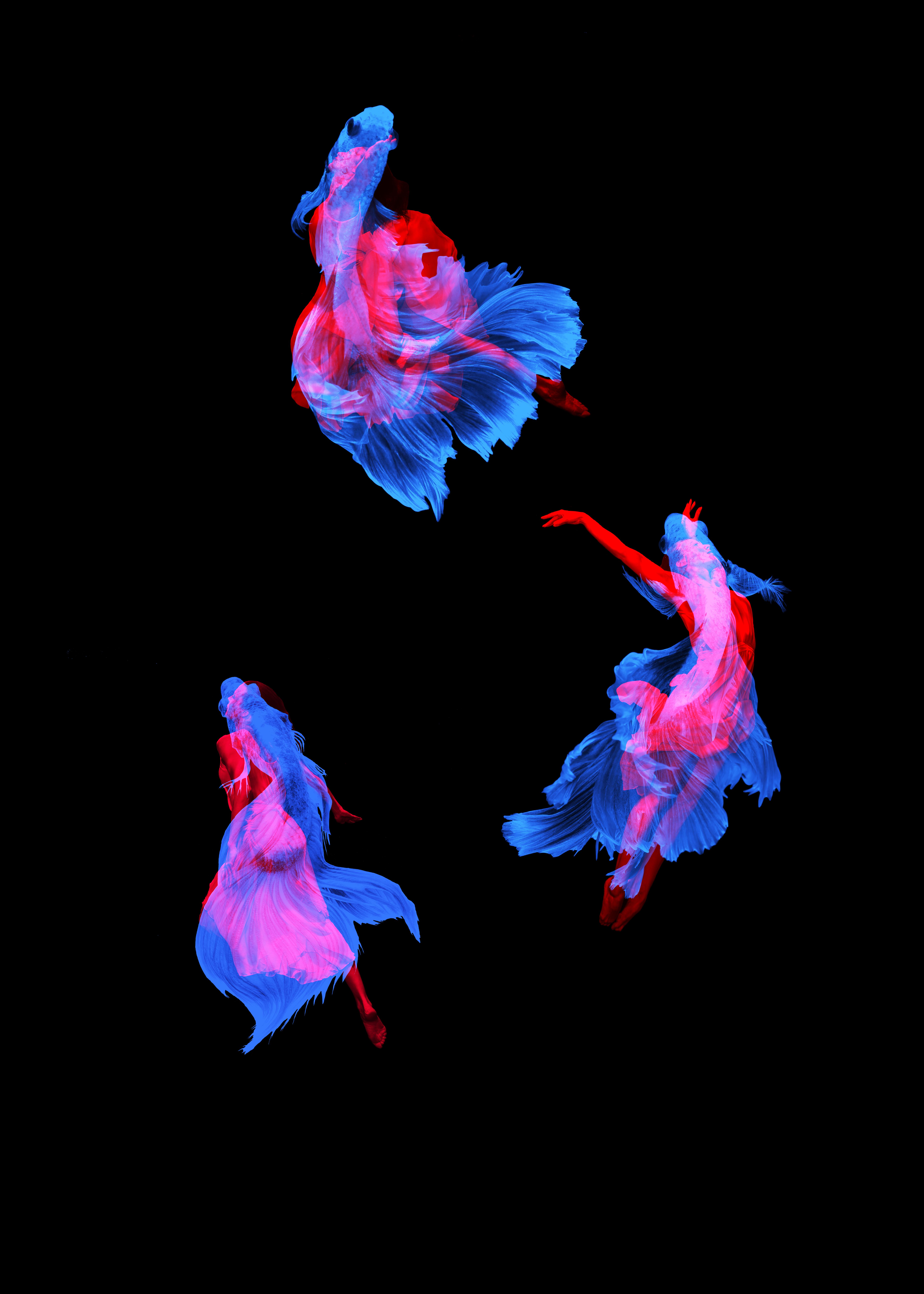Water Dancers_20x28