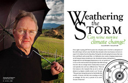 Can Wine Weather the Storm?